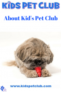 about kids pet club for parents and kids