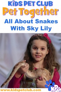 KPC All about snakes with sky lily