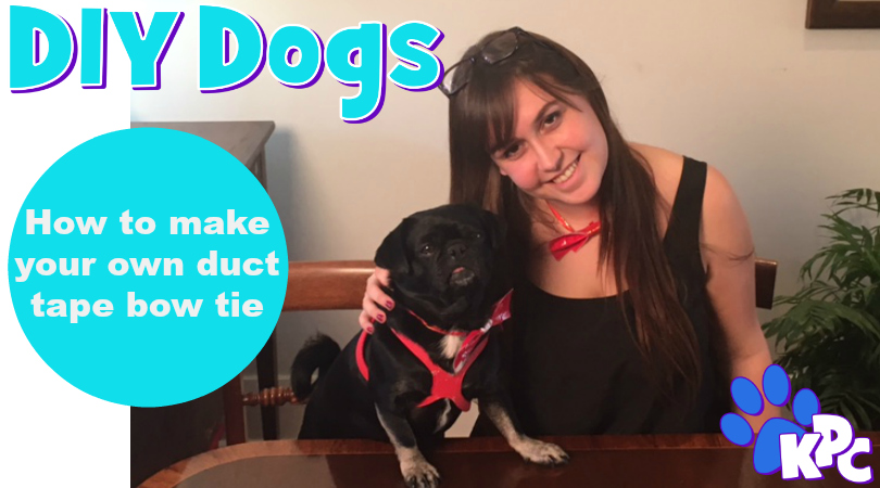 How to Make a DIY Duct Tape Bow Tie Collar for Your Pet