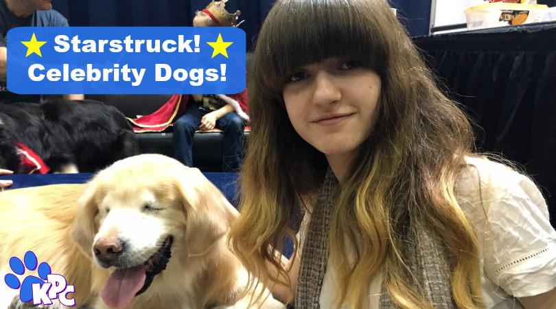 Introducing the Adorable and Charming Celebrity Pets at the CPE