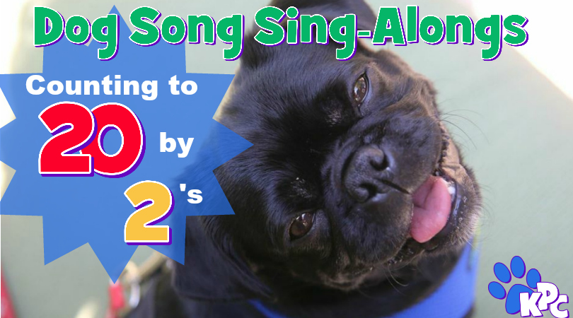 How to Count All The Way To 20 By 2's Easily With Kilo the Pug and Fishstick