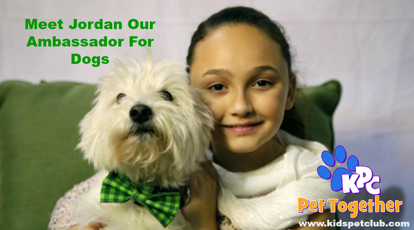 Meet Jordan Our Ambassador for Dogs