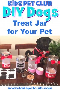KPC make your own treat jar for your pet DIY dogs
