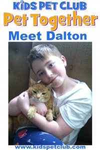 Meet Dalton cat ambassador