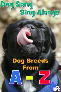 Watch this A to Z of Dog Breeds Sing-Along video for a rap of all the dog breeds kids.