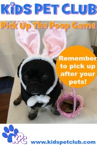 pick up the poop game clean up after your pets
