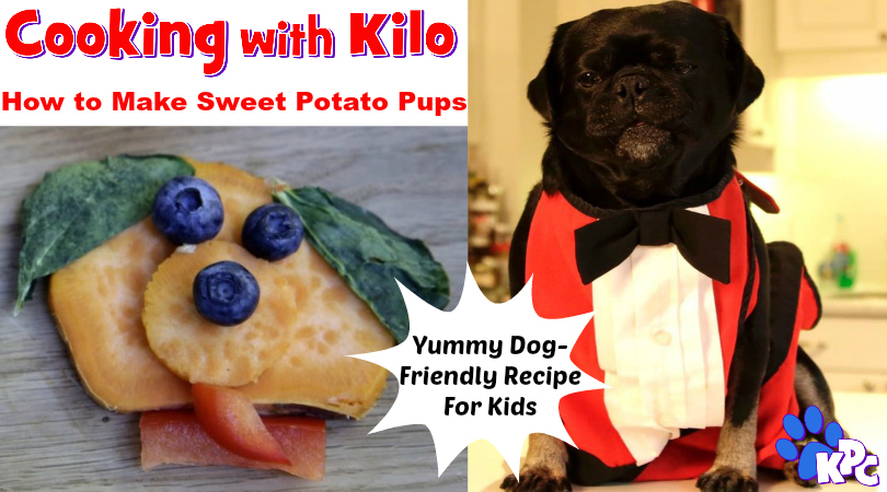 Learn How To Make Sweet Potato Pups With Kilo The Pug
