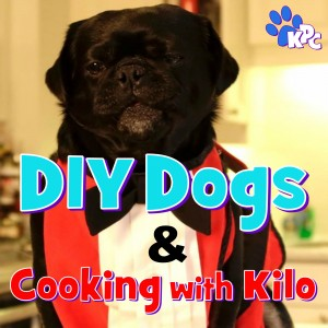 DIY Dogs and Cooking With Kilo Pin Board