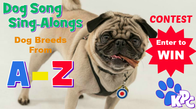 Are you our next star? Enter the Dog Song Sing-Along Remix Contest
