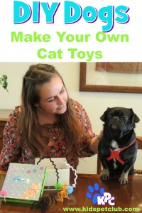 Learn how to make your own DIY cat toys with Kilo the Pug and a cute box to put them in while you're at it