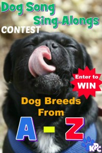 dog-breeds-from-A-Z-CONTEST