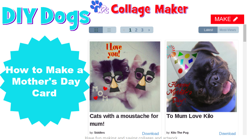 Diy archives kids pet club how to make an amazing diy mothers day card solutioingenieria