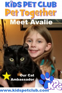 Meet Avalie our Cat Ambassador for Kids Pet Club