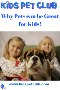 why pets can be great for kids by kids pet club
