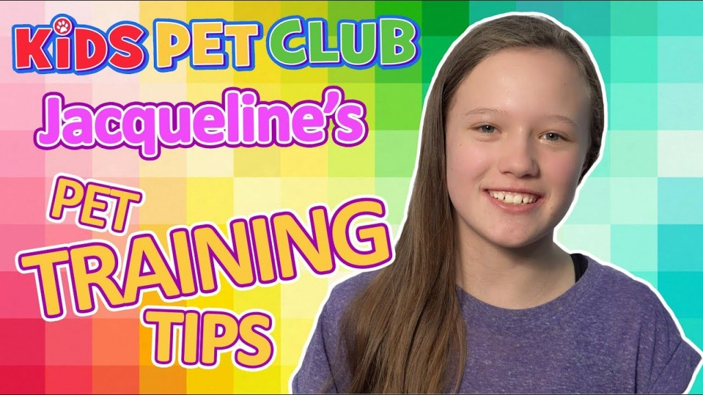 How to Train Your Dog to do Tricks with Jacqueline's Easy Tips
