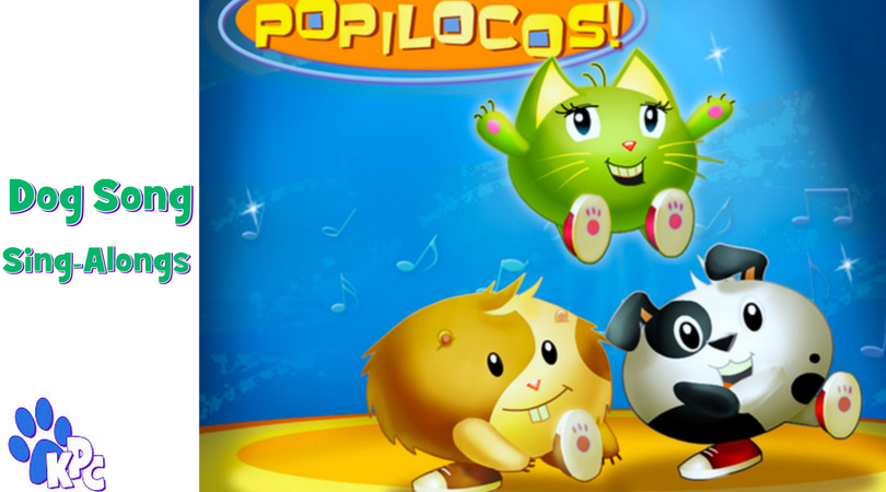 Cutest Popiloco Puppies Videos Will Make You Want To Dance