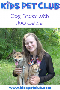 Train your dog to do cute tricks with easy tips from Jacqueline