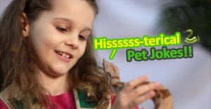 10 hiss-terical Pet Jokes for kids