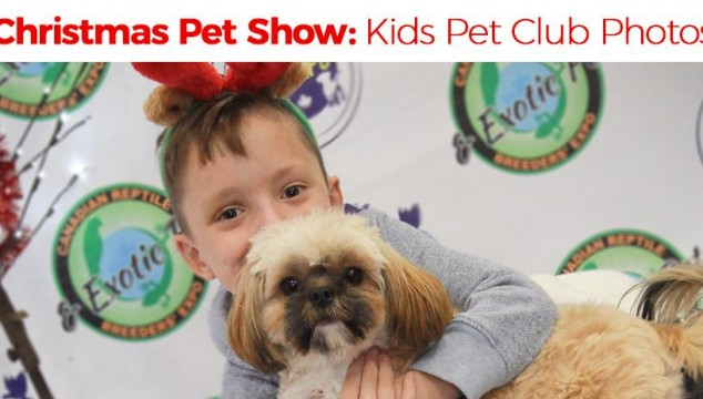 Fabulous Kids' Pet Club Video and Photos from Christmas Pet Expo 2017