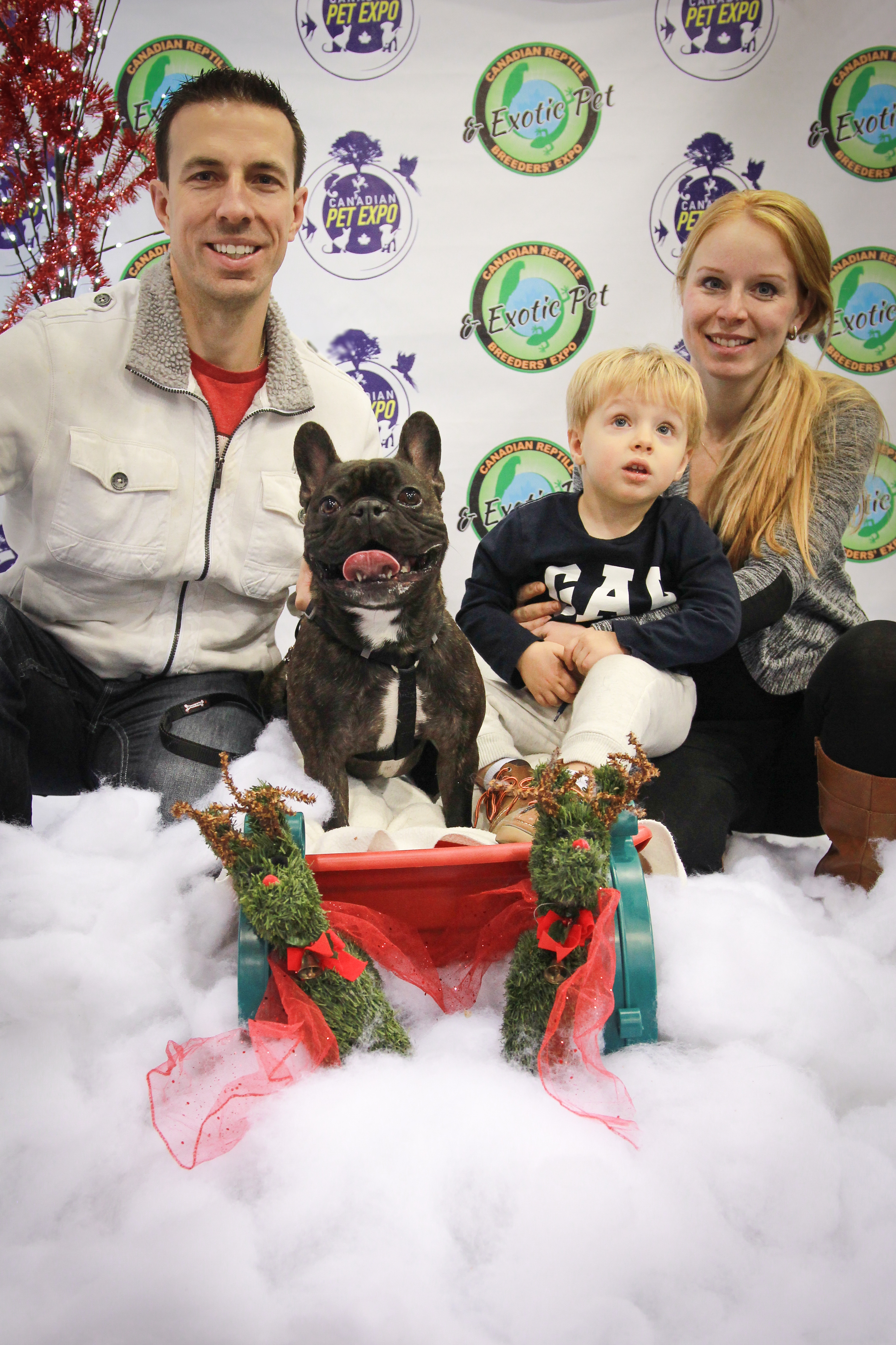 Christmas Pet Expo Scottsdale 2020 Cute Frenchie and family Christmas Pet Expo Day 2   Kid's Pet Club