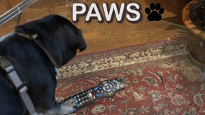Pet Jokes Paws button