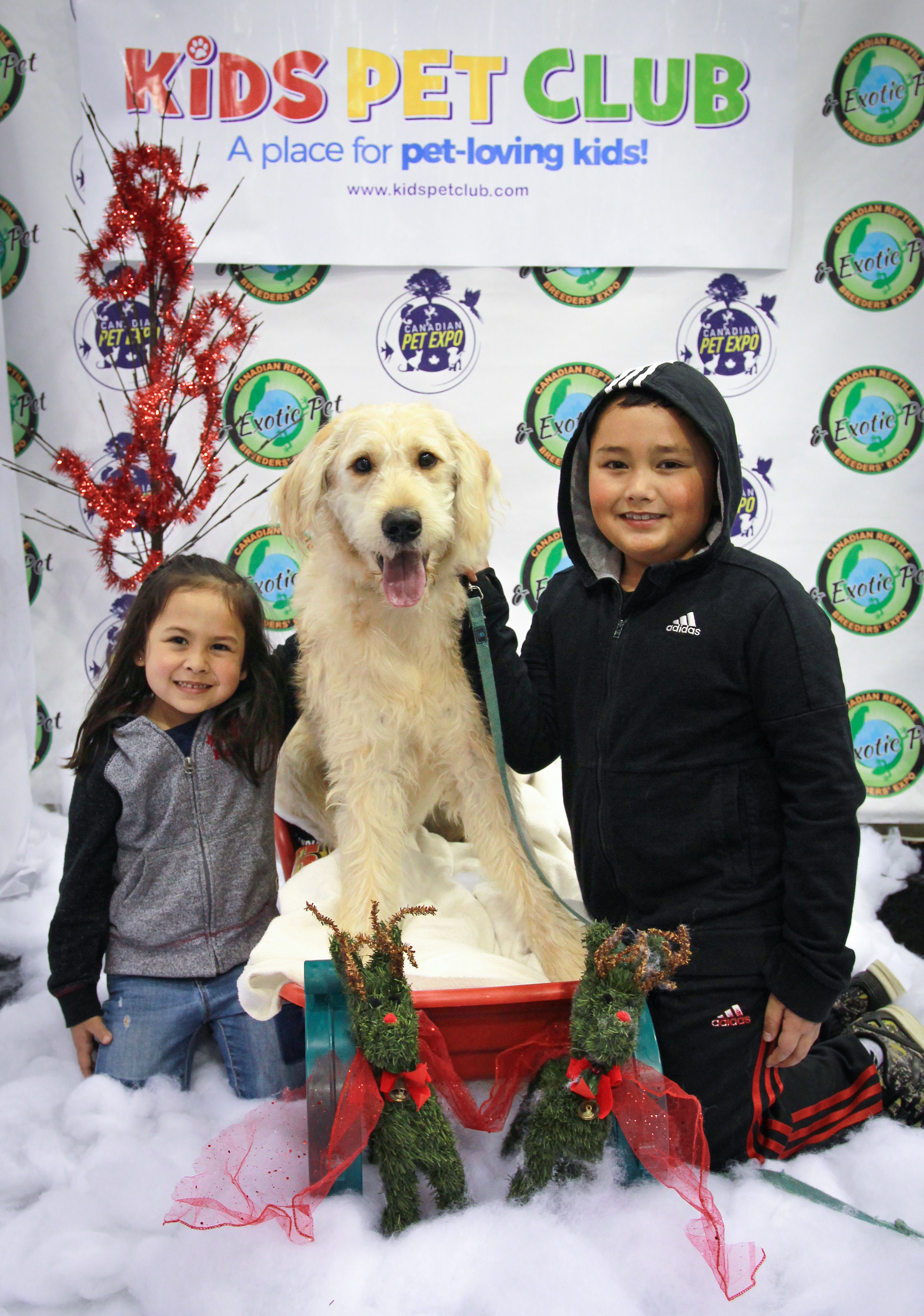 Christmas Pet Expo Scottsdale 2020 Rosalie, Malcolm and Nacho the Goldendoodle at Kids' Pet Club at